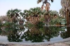 The pool at Eliye Springs Resort