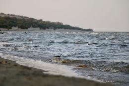 The beach at Eliye Springs Resort