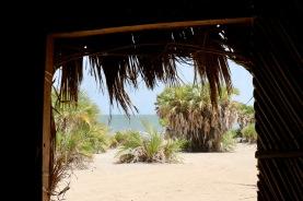 View from Manyatta: Eliye Springs Resort